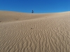 Imperial Sand Dunes Recreation Area photo