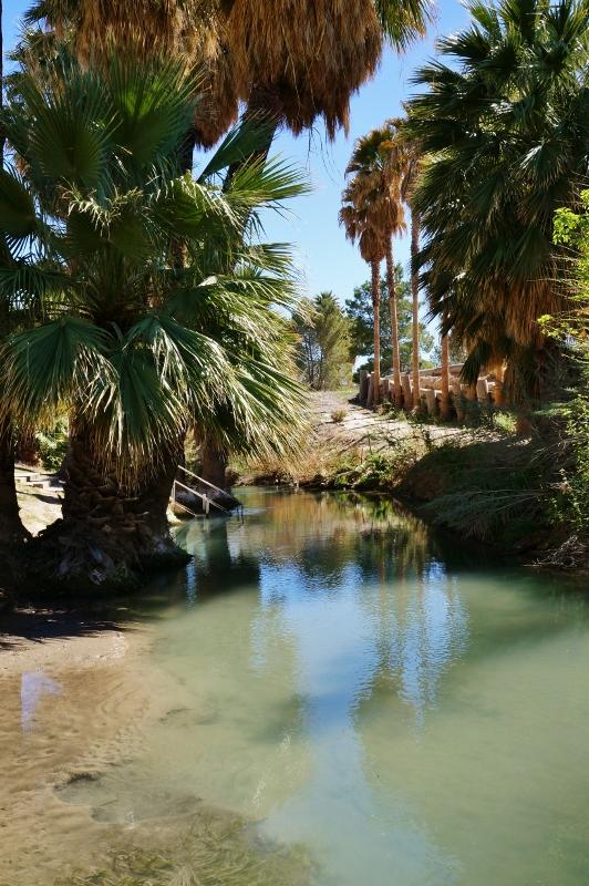 81 Palm Gardens Home Rv Park