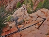 Chained Path Leading to Angels Landing