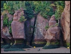 Bay of Fundy, Hopewell Rocks photo