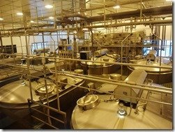 Tillamook Cheese Factory Photo