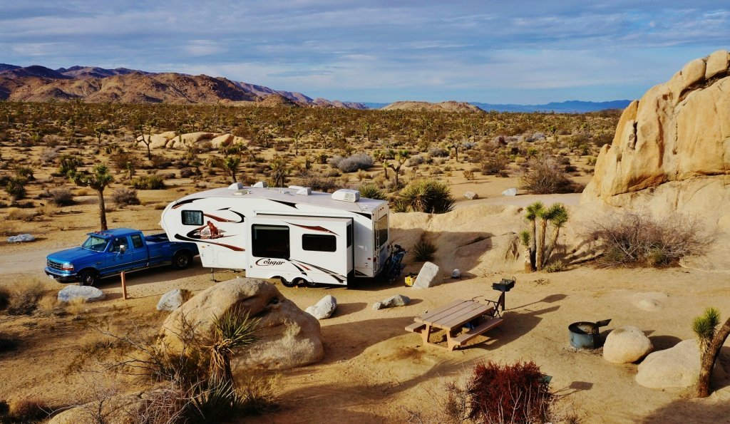 Belle campground in Joshua Tree NP