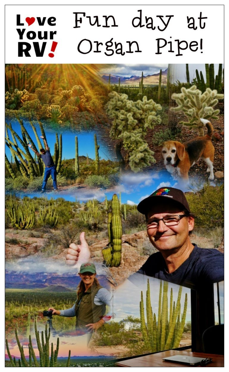 Fun Day at Organ Pipe Cactus National Monument | Love Your RV! blog - http://www.loveyourrv.com/ #nationalparks #Arizona