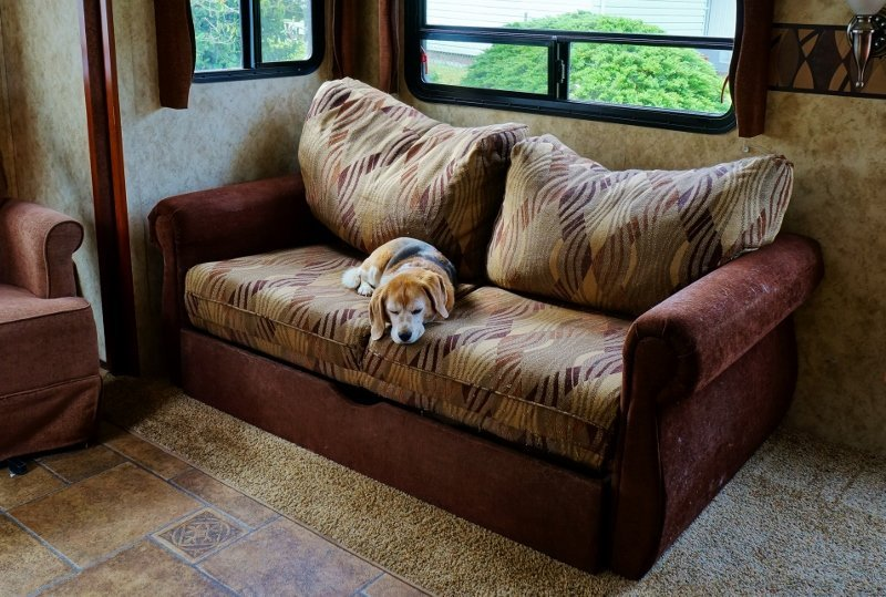 Droopy Looking Sofa Bed