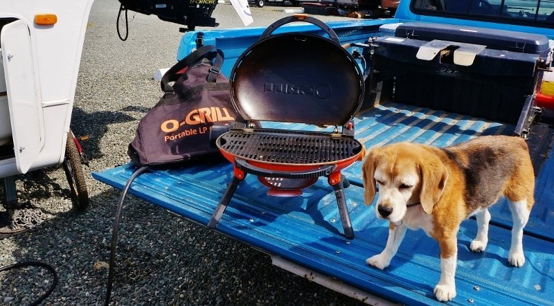 O-Grill on tailgate with beagle
