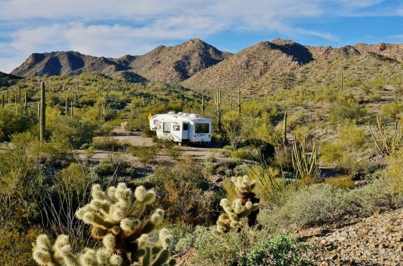 Camping on the Ajo Scenic Loop Drive
