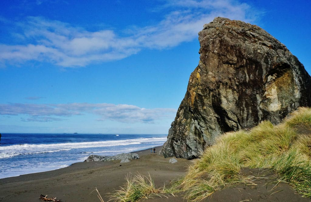 Turtle Beach Rv Resort Oregon