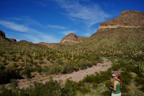 Anne admires Diablo Canyon
