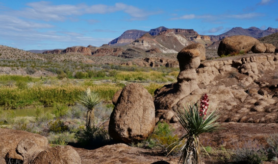 Hoodoo in Big Bend Ranch State Park