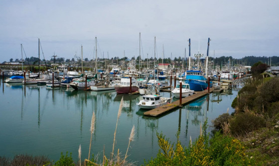 Brookings Oregon Harbor