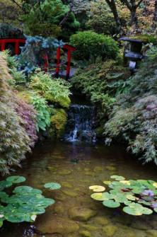 butchart-gardens-japanese-gardens