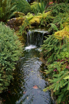japanese-gardens-waterfall