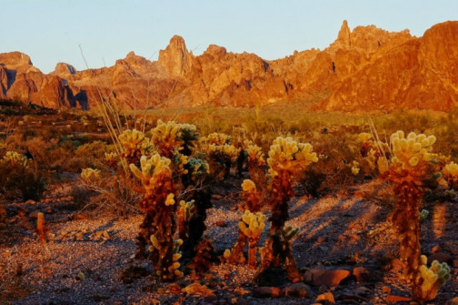 Kofa mountains in low sun