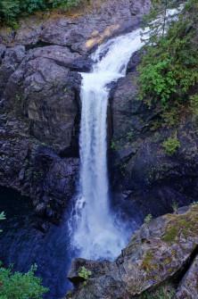 Elk Falls and Quinsam Hatchery 7