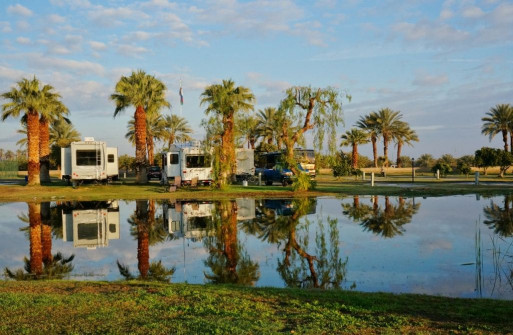 Oasis Palms RV Resort 5
