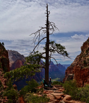 On the way to Angels Landing