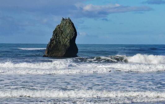 Turtle Rock Resort at Gold Beach Oregon (4)