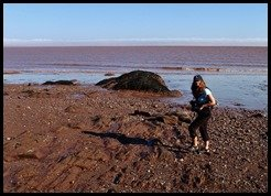 Bay of Fundy, Hopewell Rocks photo