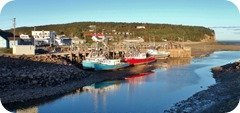 Alma Fishing Boat, Bay of Fundy