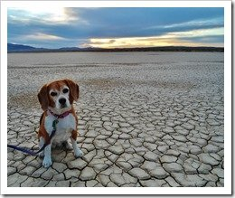 Clarke Dry Lake