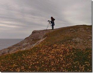 Newfoundland RV Trip - Cowhead