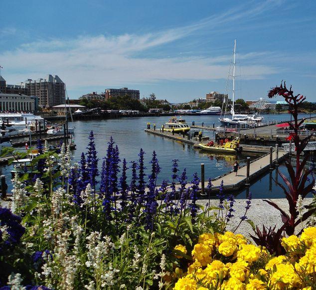 Victoria's Inner Harbour Feature Image