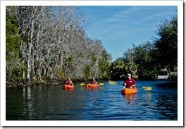 Kayaking in Crystal River
