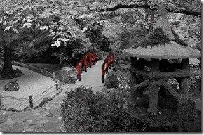 Japanese gardens red bridge