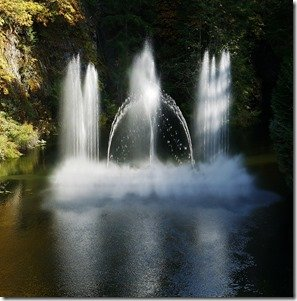 Ross Fountain Display