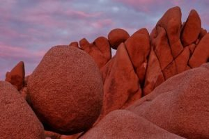Joshua Tree National Park Visit Feature Photo