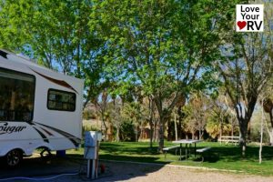 Palm Creek Resort RV Park Feature Photo