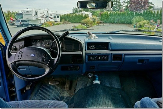Blue's Interior View