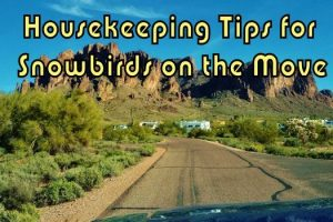 Housekeeping Tips for Snowbirds on the Move Feature Photo