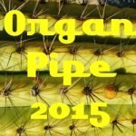 Organ Pipe Cactus NM Visit 2015 Feature Photo