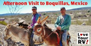 Afternoon Visit to Boquillas Feature Photo