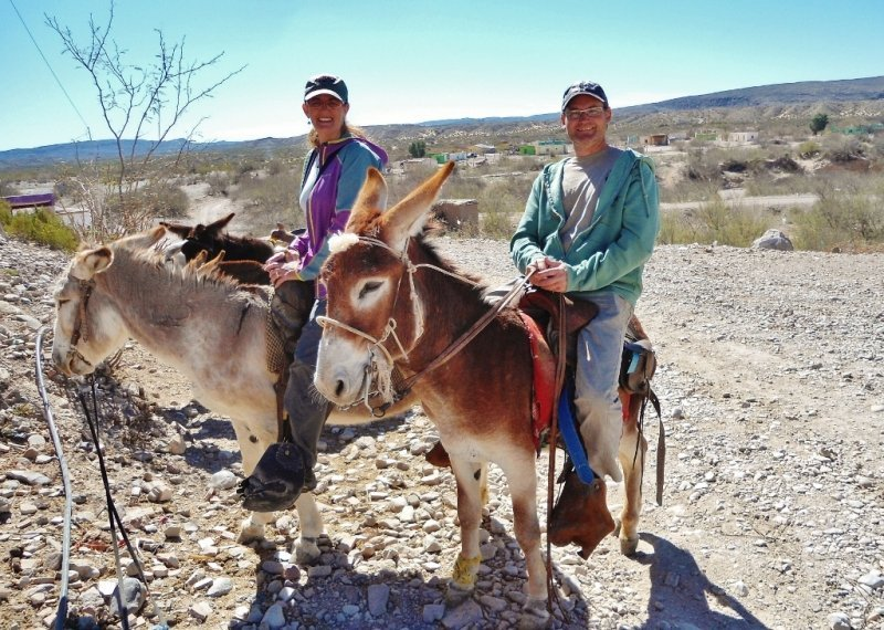 Our Burro Taxis