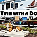 RVing with a Dog as a Fulltimer Feature Photo