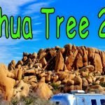 Joshua Tree 2016 Visit Feature Photo