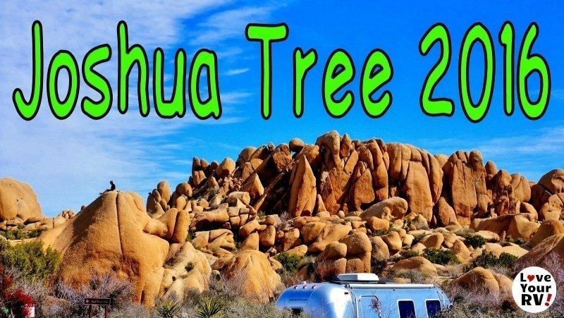 Joshua Tree 2016 Visit Feature Photo