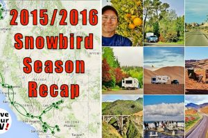 2015 2016 Snowbird Season Recap Feature Photo