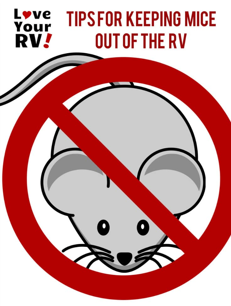 Tips to Keep Pesky Mice Out of Your RV from the Love Your RV! blog - https://www.loveyourrv.com/ #RVing #RVlife