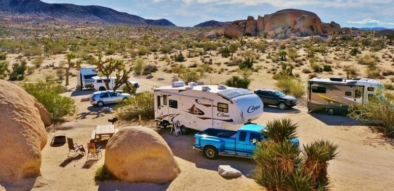 Joshua Tree NP Belle Campground