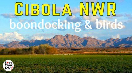 Exploring the Cibola National Wildlife Refuge