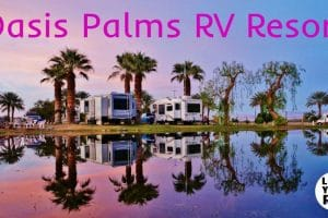 Oasis Palms RV Resort Feature Photo