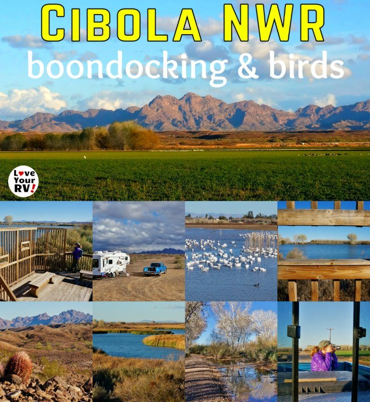 Our January 2017 Visit to the Cibola National Wildlife Refuge We enjoyed photography, bird watching, camping and hikes into the desert - https://www.loveyourrv.com/