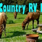 Elk Country RV Park Feature Photo