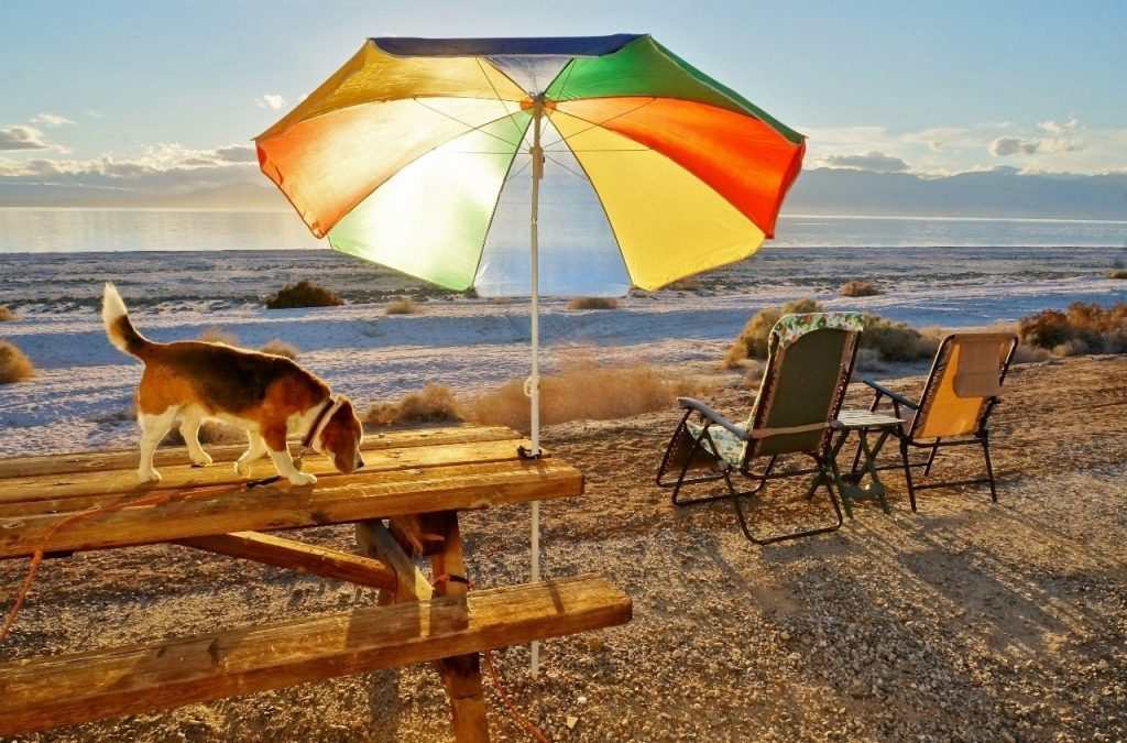Salton Sea California Happy Hour