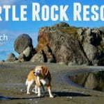 Turtle Rock Resort Feature Photo