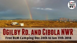 Ogilby and Cibola BLMs Feature Photo