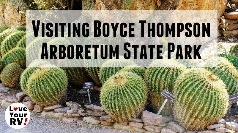Boyce Thompson Arboretum Feature Photo